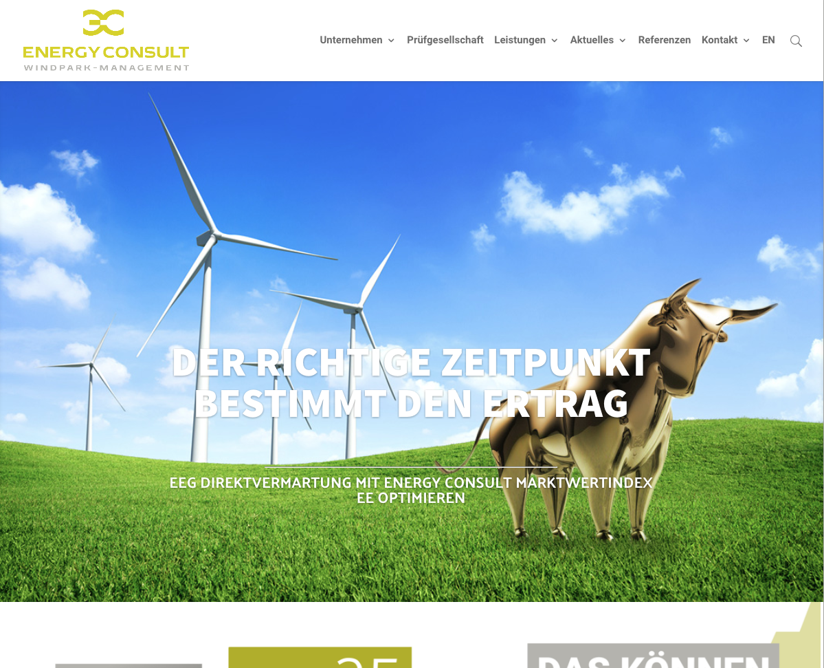 Screenshot Energy Consult